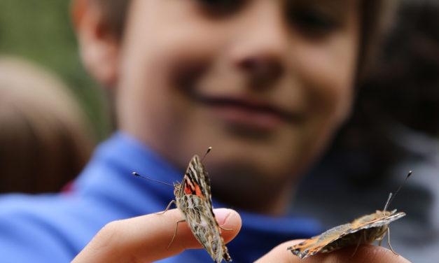 Un proyecto municipal involucra a los escolares con el medio ambiente